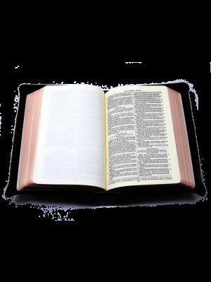 Bible cuir noir, interfoliée à rebords, format de poche