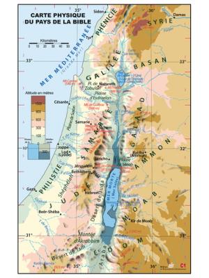 Carte murale : La Palestine