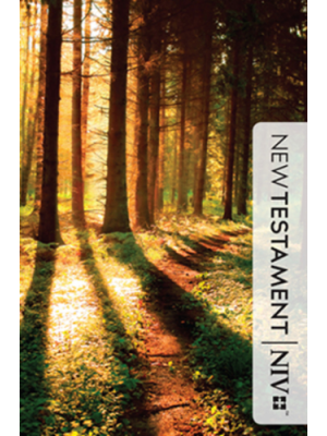 Nouveau Testament, New International Version