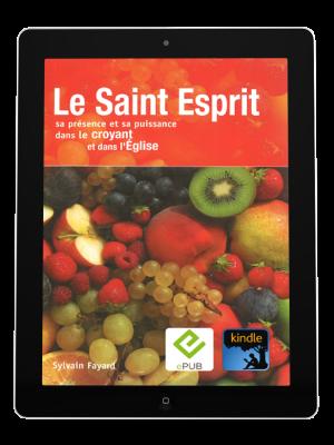 Le Saint Esprit, sa présence et sa puissance-eBook