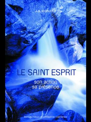 Le Saint Esprit, son action, sa présence